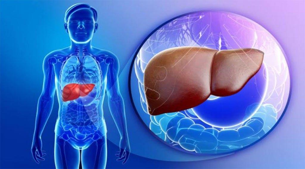 گزارش موردی درمان بیماری کبد چرب با طب سنتی در سلامتکده بوعلی