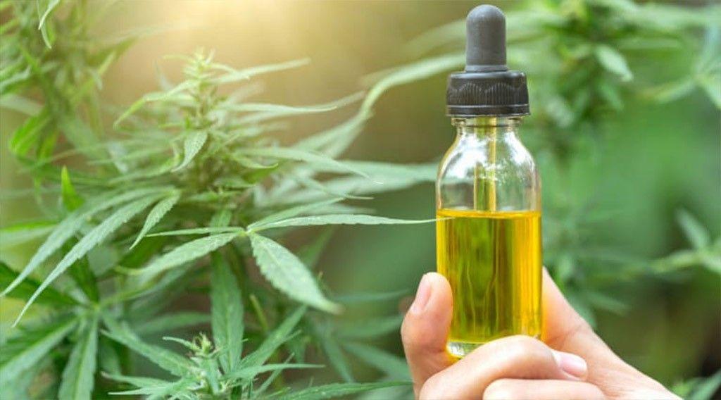 خواص شگفت انگیز روغنهای گیاهی در درمان خانگی بیماریها