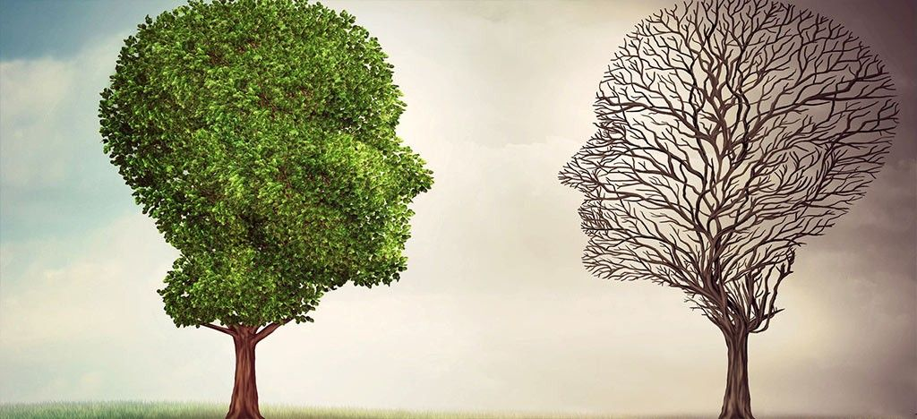 گزارش دو مورد درمان افسردگی در سلامتکده ی طب سنتی بوعلی